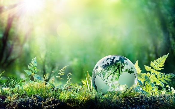 409-grassy-globe.jpg